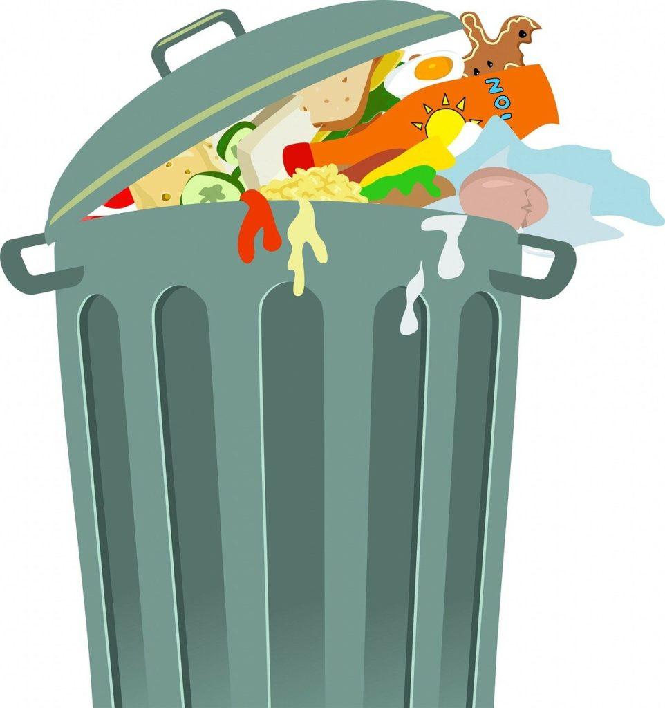 Pourquoi développer les protéines végétales réduit considérablement le gaspillage